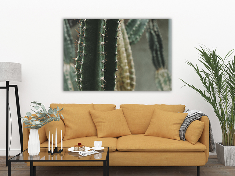 best-canvas-prints-home-decor