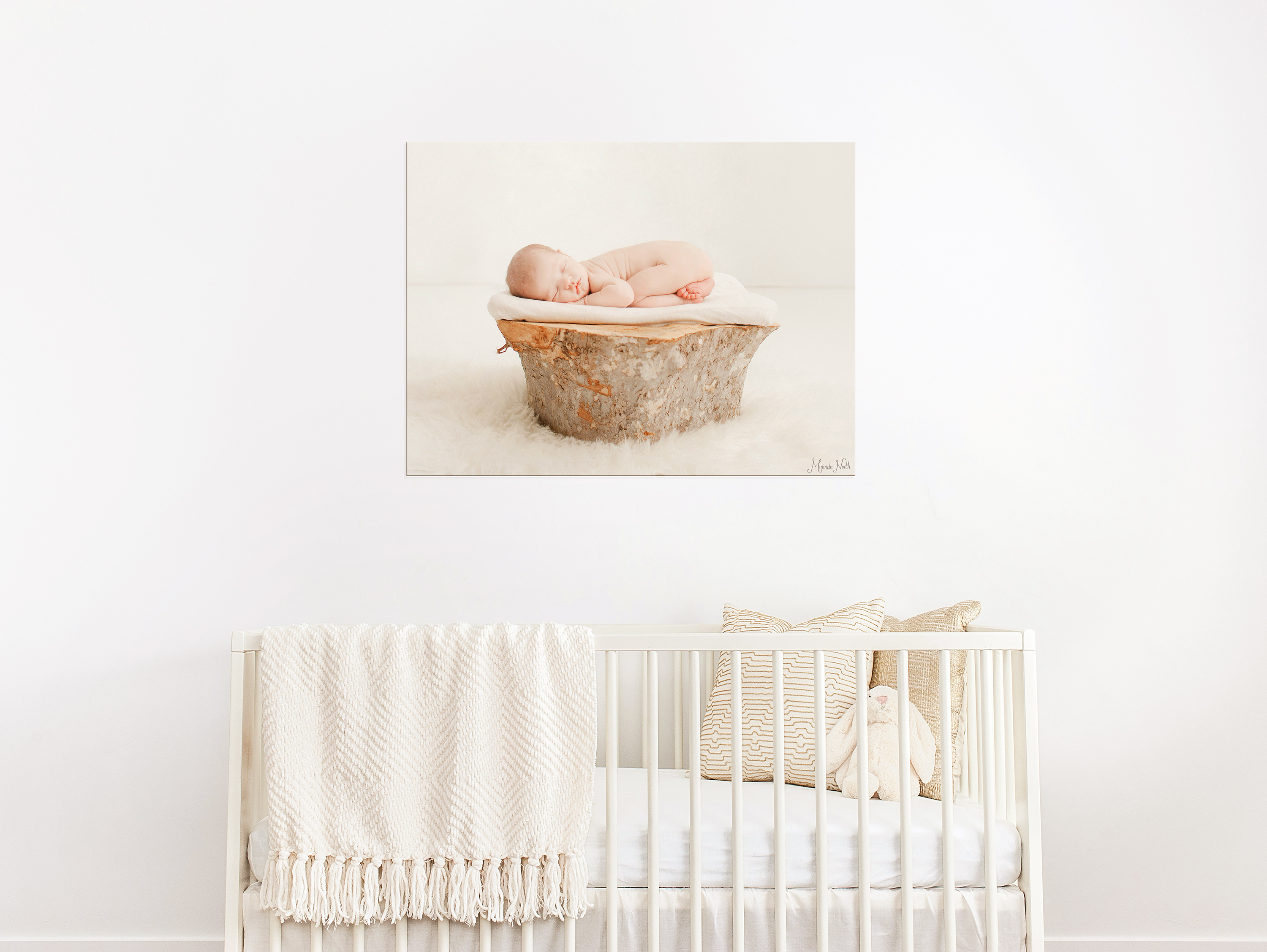 Babies-on-canvas
